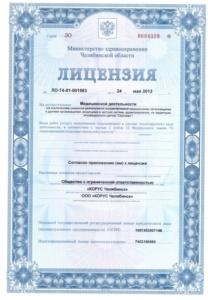 лицензия стр. 1